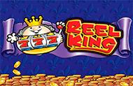 Играть в азартную игру 4 Reel Kings