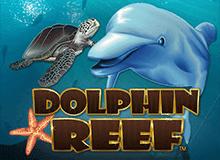 Онлайн игра Dolphin Reef