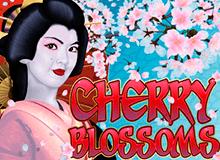 Игровой автомат Cherry Blossoms